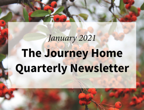 January 2021 Quarterly Newsletter