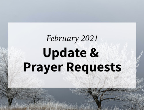 February 2021 Update for The Journey Home